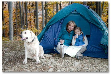 Mother and daughter and dog sitting in tent in the woods