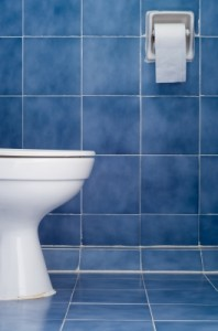 bathroom with blue tile and white toilet