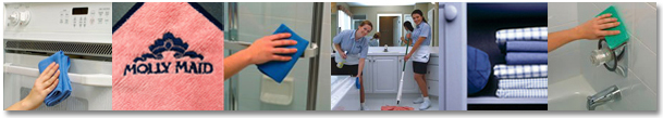 MM Cleaning Tips Hub Photo