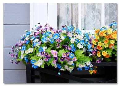 window box planter with flowers